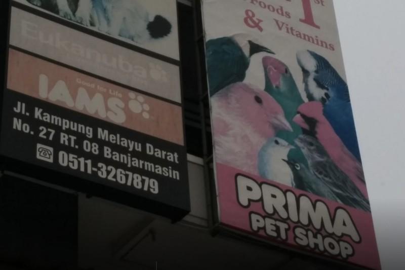 Prima Pet Shop
